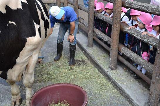 みんな、牛乳すきかな? ピューってお乳を搾ってくれたよ。